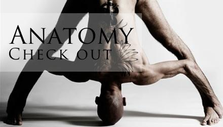 Anatomy Sub Banner Link